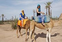 Camel Ride in Desert Safari