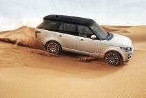 Desert Safari Sand Dune Drive