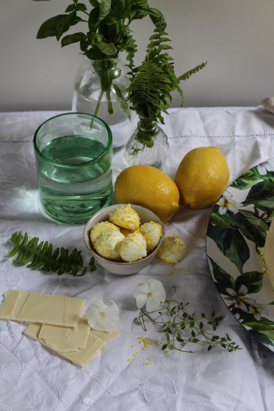 lemon poppy seed chocolate shard cake-1-10
