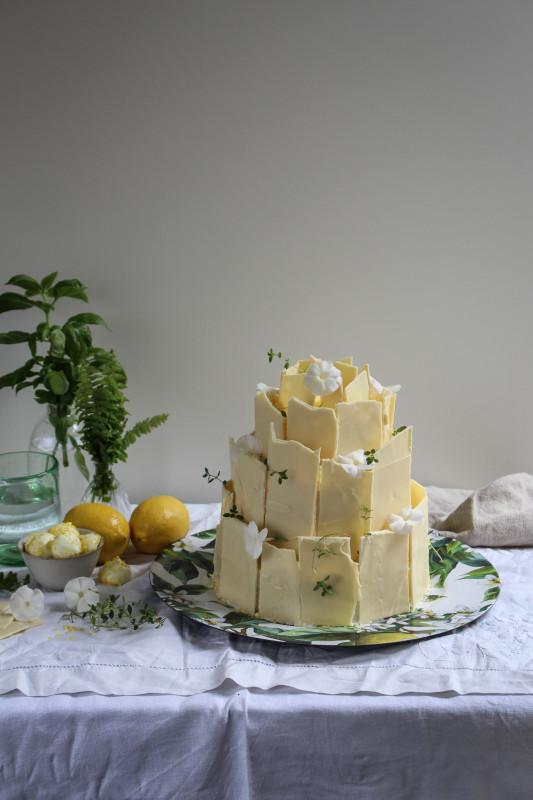 lemon poppy seed chocolate shard cake-1-11