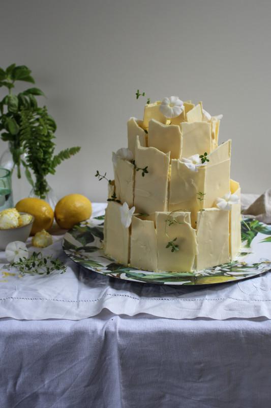 lemon poppy seed chocolate shard cake-1-17