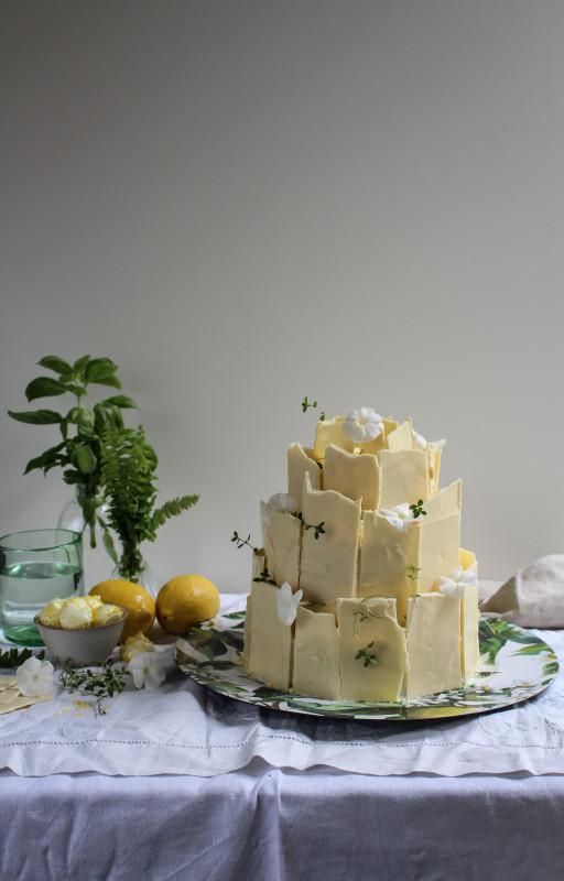 lemon poppy seed chocolate shard cake-1-19