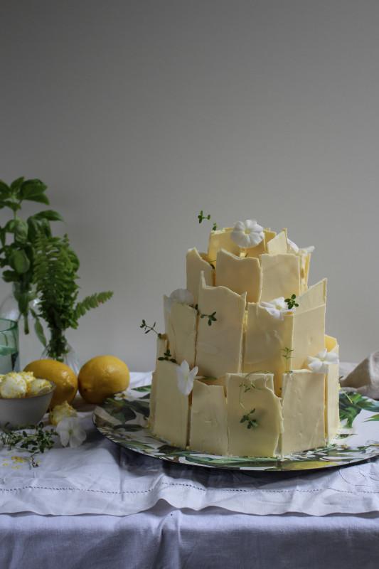 lemon poppy seed chocolate shard cake-1-21