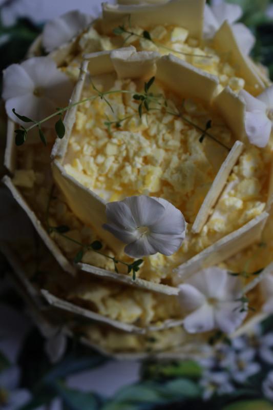 lemon poppy seed chocolate shard cake-1-3