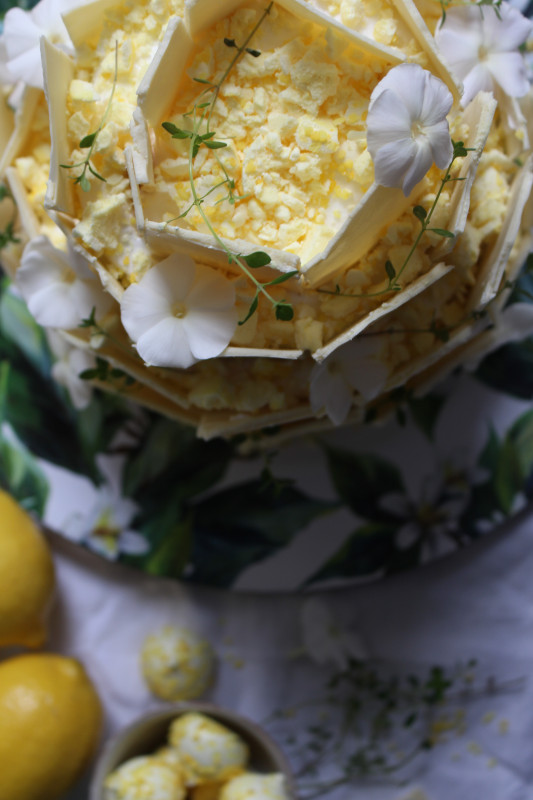 lemon poppy seed chocolate shard cake-1-35