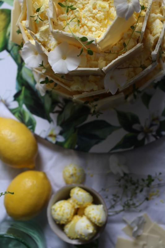 lemon poppy seed chocolate shard cake-1-36