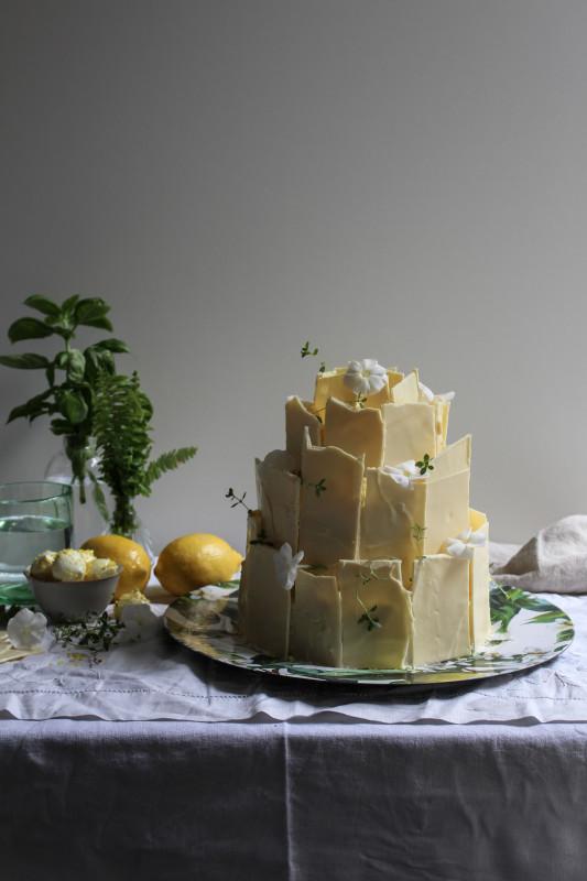lemon poppy seed chocolate shard cake-1-37