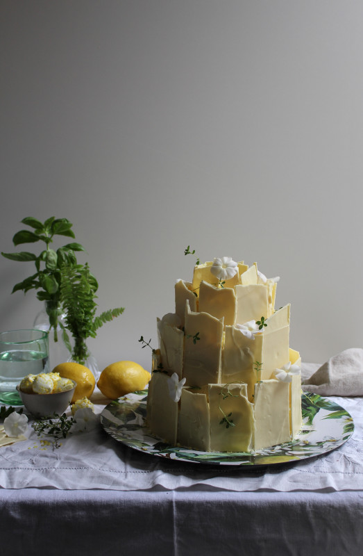 lemon poppy seed chocolate shard cake-1-39