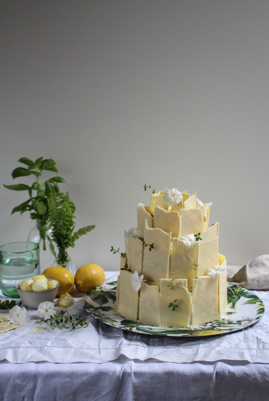 lemon poppy seed chocolate shard cake-1-5