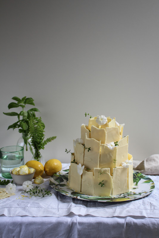 lemon poppy seed chocolate shard cake-1-6