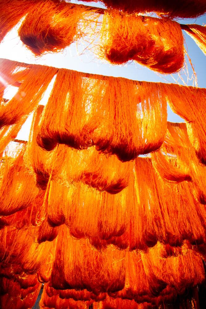 morocco cactus silk