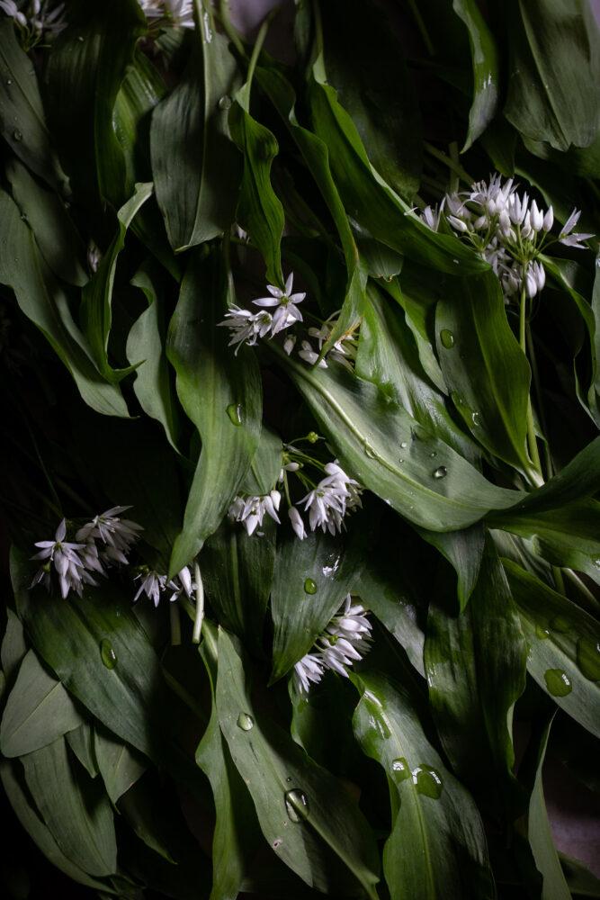 wild garlic focaccia