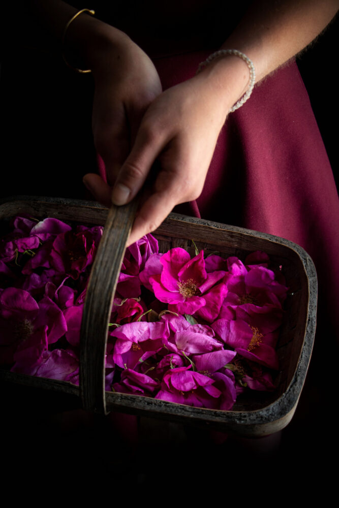 wild roses in basket