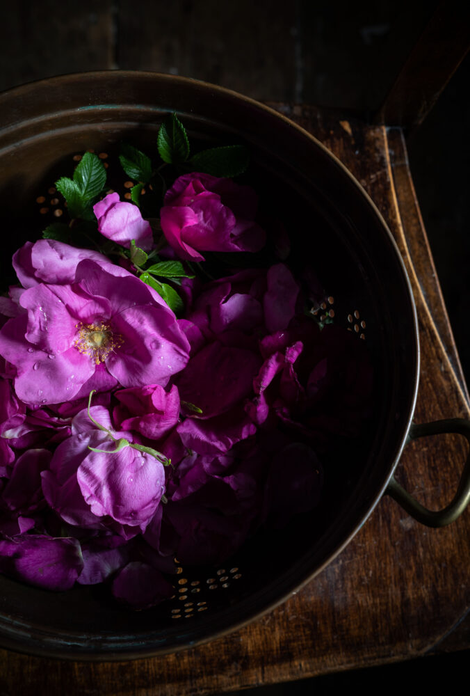 roses in a sieve
