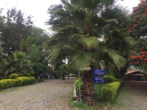 Campus of the College of Veterinary Medicine