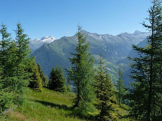 An der Abzweigung zeigten sich dann die Hohen Tauern. Bei dem auffälligen, schneebedeckten Gipfel handelt es sich um den Ankogel.