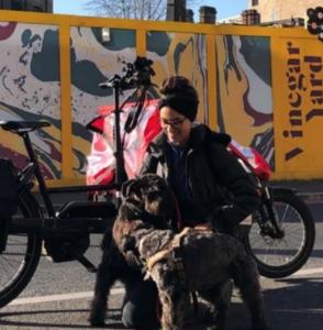Dog walker on a cargo bike
