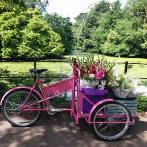 Flowers delivered by bike Cardiff