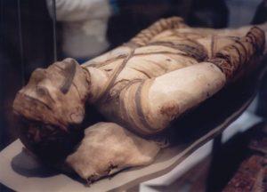Mummy Cosmetology