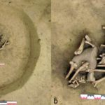 Archaeologist Found Mysterious Neolithic burial pit full of amputated arms in France