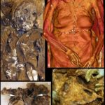 Weird Archaeological Found: Renaissance couple had hearts buried with each other | Histecho..