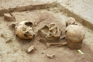 The remains indicate that most of the dead were in good health before they died.