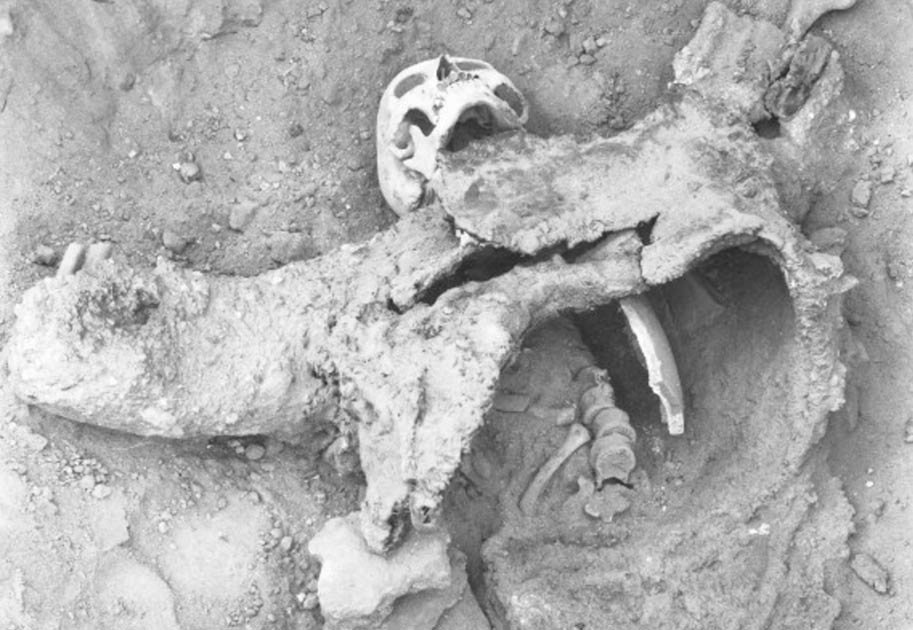 Archeologist Discovered Evidence Of Ancient Chemical Warfare