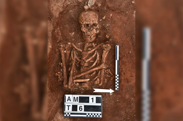 Ancient Viking burial ground discovered in southern Italy