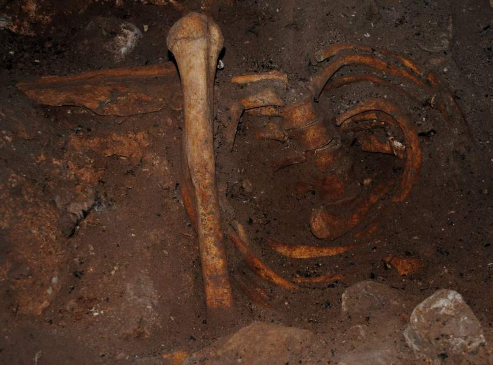Stone Age burial remains from Taforalt Cave