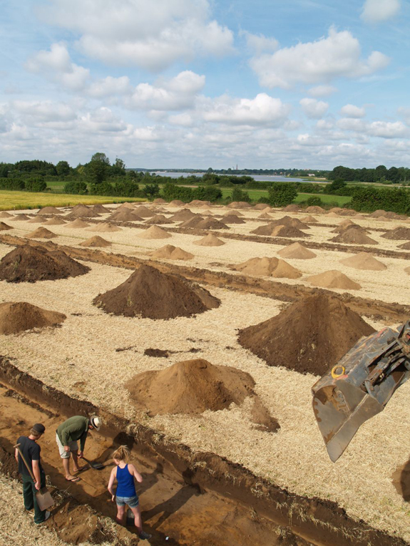 Viking's Most Powerful Military City Unearthed in Northern Germany