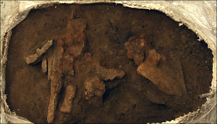 1,000-Year-Old Viking Toolbox Found at Mysterious Danish Fortress