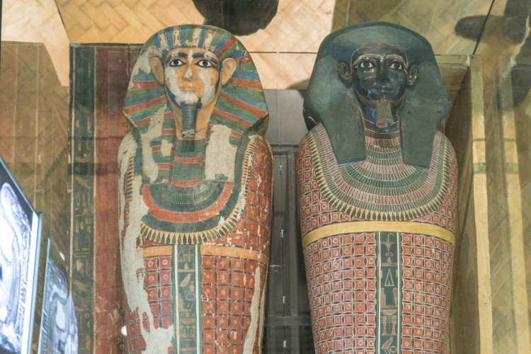 The two mummies, side by side. DNA was extracted from the teeth, which were checked to see if they were firmly attached to the skeleton. The mummies suffered no damage in the process.