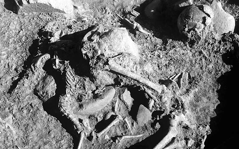 Neolithic Graves in Europe Hold Remains of Dogs and People
