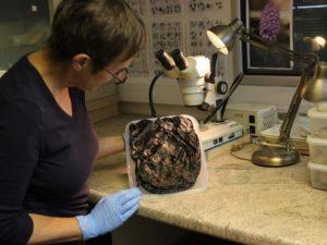 Geraldine Crann, Oxford Archeology's finds superviser, holds a small leather shoulder bag