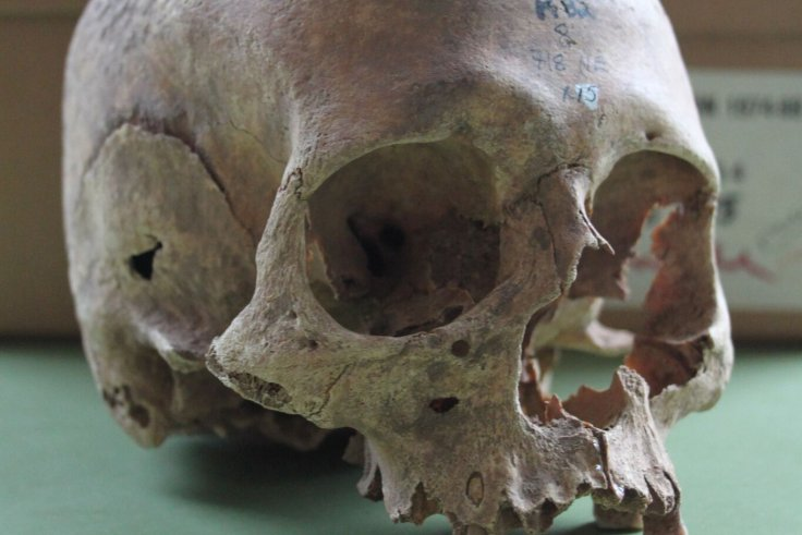 New Dates Obtained for Possible Viking Mass Grave in England