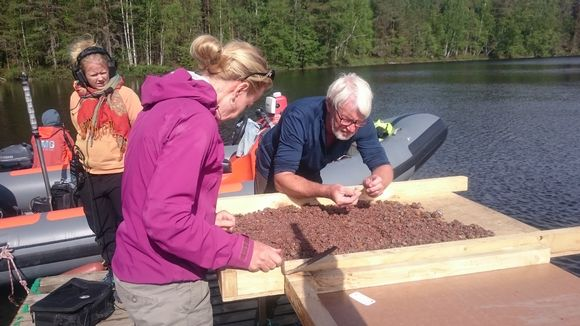 Archaeologists uncover Stone Age kitchen at bottom of Finnish lake