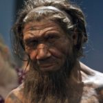 Neanderthal Hearths in Spain Analyzed