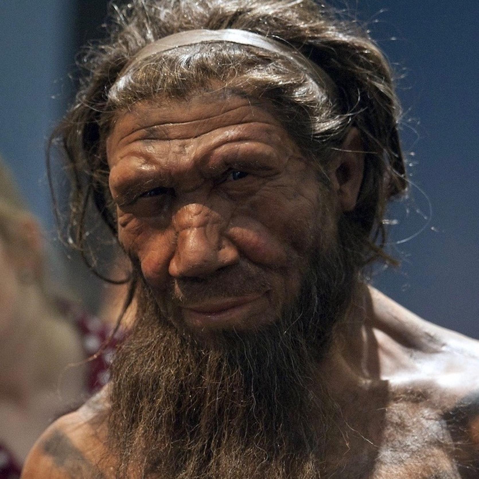 Neanderthal Hearths in Spain Analyzed