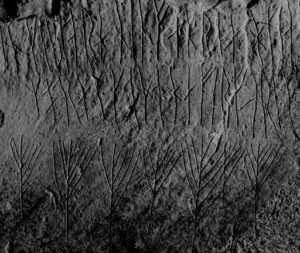12th century runes carved inside the cairn.