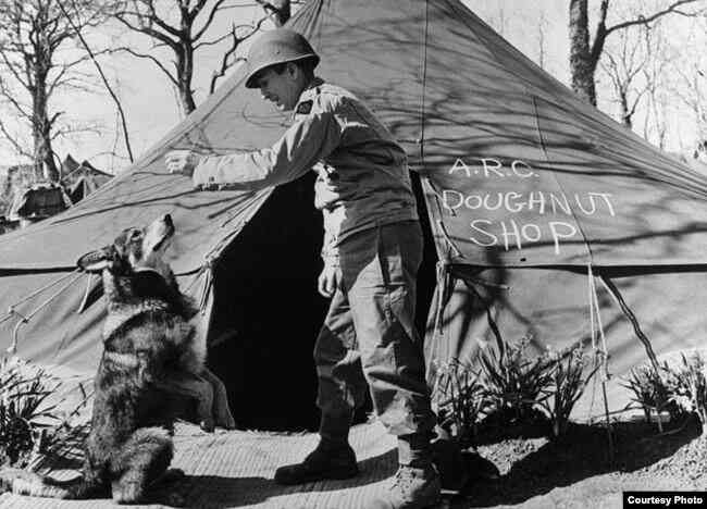 Heroic dog is honored 75 years after saving the lives of U.S. soldiers
