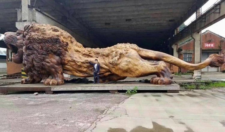 Giant Lion Carved From Single Tree By 20 People In 3 Years Becomes The World's Largest Redwood Sculpture