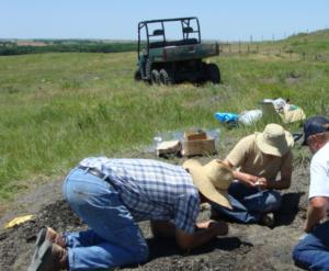 Researchers excavate a farm in Kansas where the Credotus teeth were found.