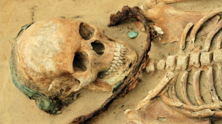 Possible African-American Burials Unearthed in Washington, D.C.