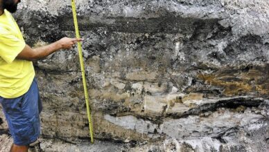 Remains of 2,000-Year-Old Prehistoric Woman Found in Davie, Broward County, Florida