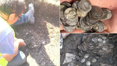 Man discovers £200,000 worth of ancient coins in a farmer's field