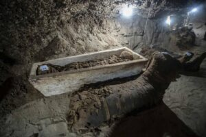 Archaeologist have also discovered sarcophagi animal coffins and papyrus