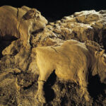 Museum of Artifacts: 14000 years-old bisons sculpture found in Le Tuc D'Audoubert cave, France