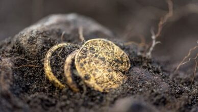 Archaeologists Strike Gold at the Site of a Mysterious 5th-Century Massacre