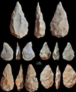 The cranium bone was found alongsie pear-shaped Acheulean stone tools, pictured, an innovation in hunting first used by Homo erectus in Africa