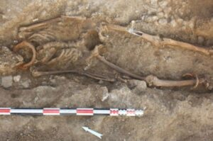 A wider photo shows the same skeleton – thought to be a man – with a shackle on his ankle as well as his neck